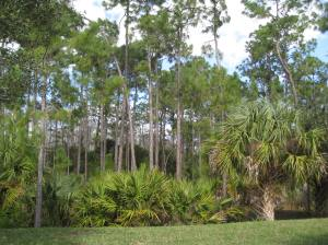 Naples Nature Preserve